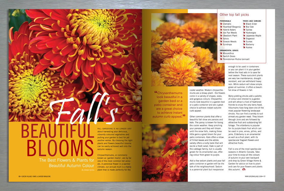 Green Village Home and Garden magazine editorial design for fall blooms
